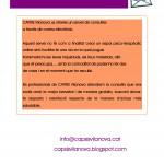 Consultes Online
