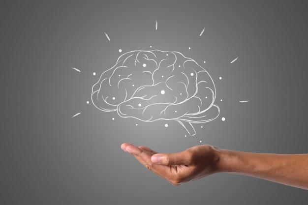 Neuropsicologia Capsis